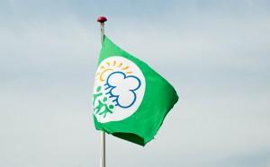 flag_DSC0261